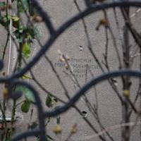 Aknamentesített Budapest. Gyűjtsük össze az utolsó cirill betűs ellenőrzőjeleket a fővárosi házfalakról