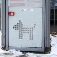 Csomagmegőrző kutyáknak. Száraz, biztonságos rekeszbe zárhatjuk ebünket, amíg vásárolunk