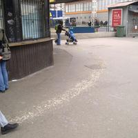 Aszfaltfelfestés természetes anyaggal. A BKV praktikusan galambürülékkel jelöli ki, hol várakozzanak a jegyvásárló utasok