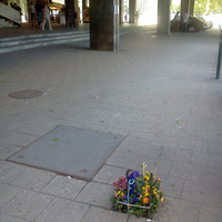 Gerillakertecske a Déli pályaudvaron. Egyetlen hiányzó térkő helyén alakították ki