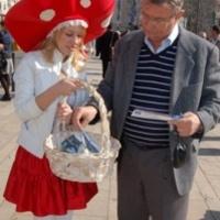 Gombalányok buzdítanak szavazásra a Móriczon