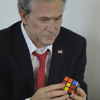 Bűvös kockázó Bush mint kávézódíszlet