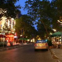 Ki kell-e vágni a Nagymező utca fáit?