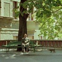 Budapest-film-rejtvény: hol van ez jellegzetes terasz paddal és fával, mely több filmben szerepel?
