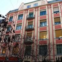 Budapest100: Meglepő pályamódosítás, építészből kutyakiképző