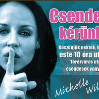 Expornós a VI. kerületi kampányban. Michelle Wild népszerűsíti a terézvárosi csendrendeletet