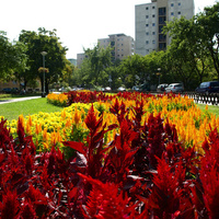 Megvan 2012 Városnegyedbajnoka! Több mint kilencszáz lájkot kapott a kedvenc városrészetek