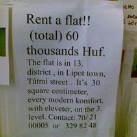 Zsebkendőnyi lakás, idioszinkratikus angol nyelvű hirdetéssel
