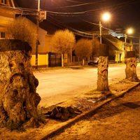 Napi graffiti: szomorú facsonkok Marosvásárhelyen