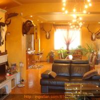 Preparált zsiráf a nappaliban - ingatlansaláta