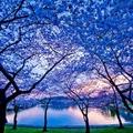 Amerika legszebb tájai - csodálatos képek
