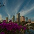 Tampa látnivalók - Florida városai