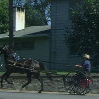 Lancaster - Amishok - 2009. szeptember 5. szombat