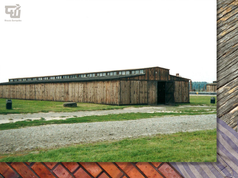 10_auschwitz-birkenau_o_wi_cim_koncentracios_tabor_kz-gedenkst_tte_memorial_lengyelorszag_poland_polska_vilaghaboru_wwii_utazas_europaba.jpg