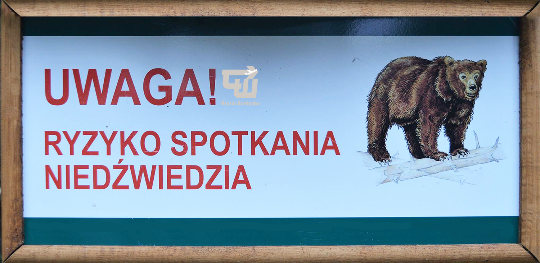 07_utazas_europaba_magyarorszag_hungary_ungarn_medve.jpg
