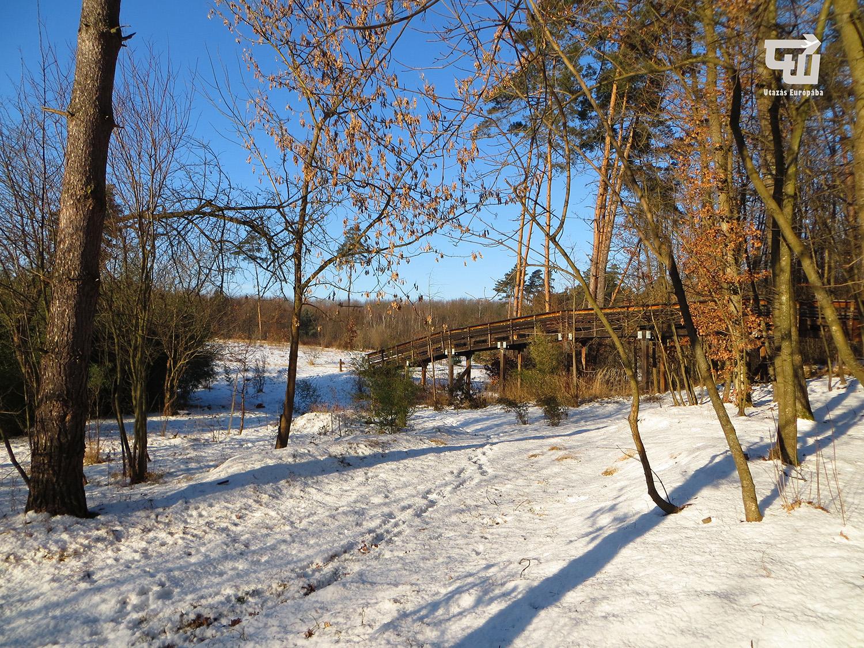 04_magyarorszag_hungary_ungarn_nyirjesi_fuveszkert_es_vadaspark.jpg