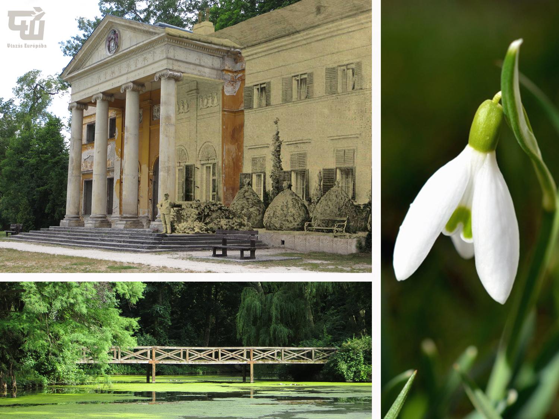 03_alcsuti_arboretum_hovirag_magyarorszag_hungary_ungarn_utazas_europaba.jpg