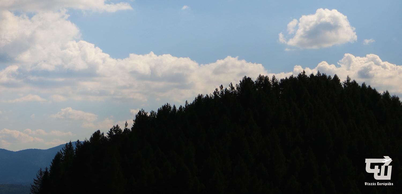 02_fekete-erdo_schwarzwald_black_forest_nemetorszag_deutschland_germany_utazas_europaba.JPG