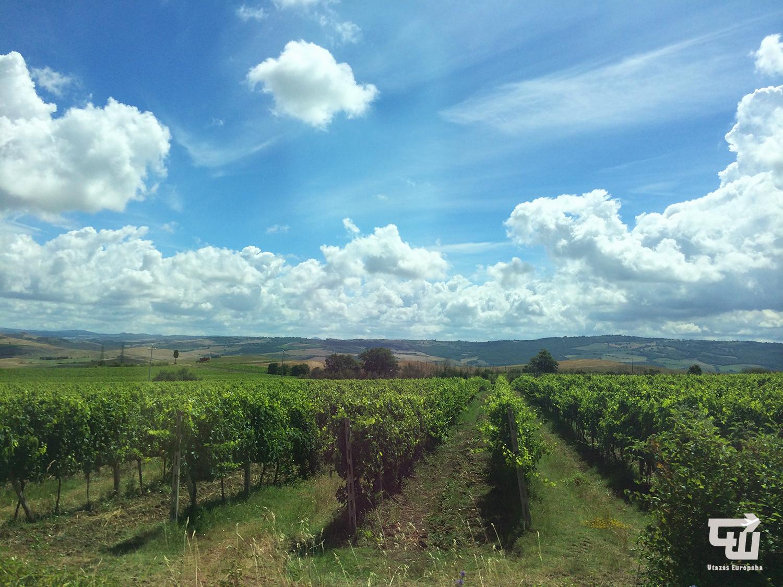 05_montalcino_val_d_orcia_toszkana_tuscany_toscana_olaszorszag_italy_italia_utazas_europaba.jpg