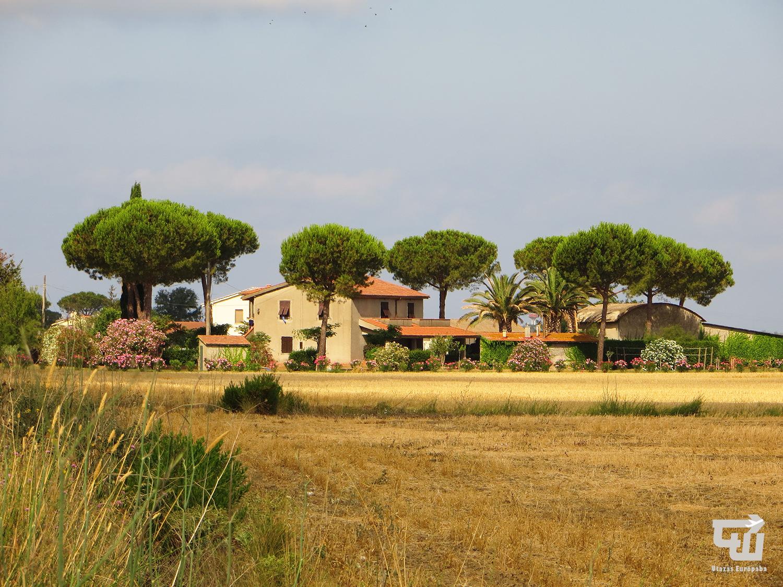 06_marsiliana_agriturismo_toszkana_tuscany_toscana_olaszorszag_italy_italia_utazas_europaba.JPG