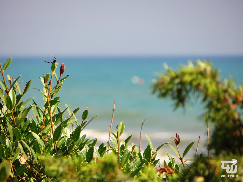 14_castiglione_della_pescaia_tengerpart_beach_spiaggia_toszkana_tuscany_toscana_olaszorszag_italy_italia_utazas_europaba.JPG