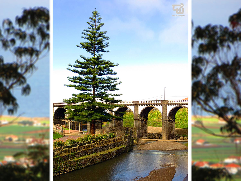 11_ponte_dos_oito_arcos_eucalyptus_ribeira_grande_azori-szigetek_s_o_miguel_azores_portugalia_portugal.jpg