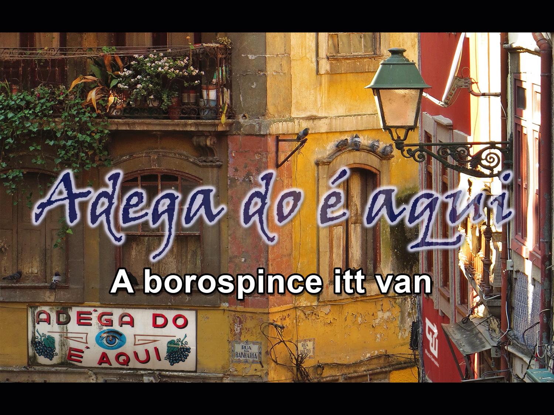 01_bor_wine_vinho_vinery_caves_alto_douro_porto_portugalia_portugal_utazas_europaba.jpg