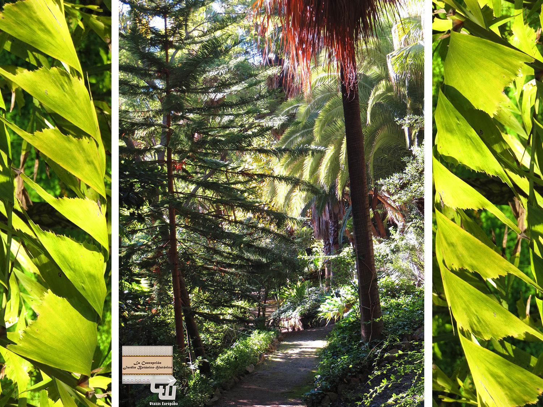 09_jardin_botanico_historico_palma_malaga_andaluzia_andalusia_andalucia_spanyolorszag_spain_espa_a_spanien.jpg