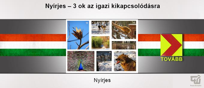 uticelok_nyirjes.jpg
