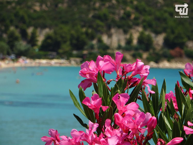 01_agios_ioannis_egei-tenger_tengerpart_strand_beach_chalkidiki_gorogorszag_greece_griechenland_makedonia_chalkidiki_utazas_europaba.JPG