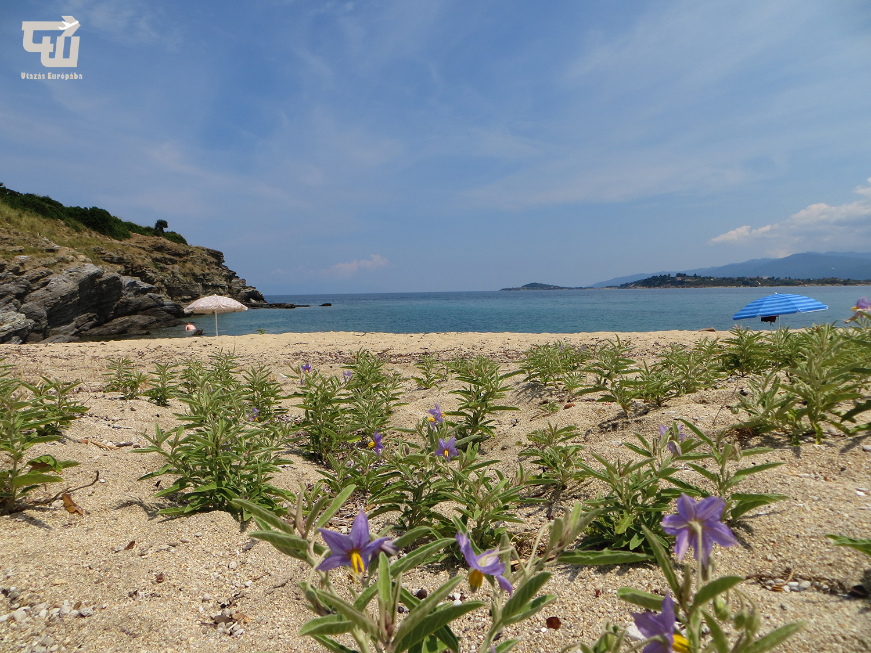 02_ormos_panagias_egei-tenger_tengerpart_strand_beach_chalkidiki_gorogorszag_greece_griechenland_makedonia_chalkidiki_utazas_europaba.JPG