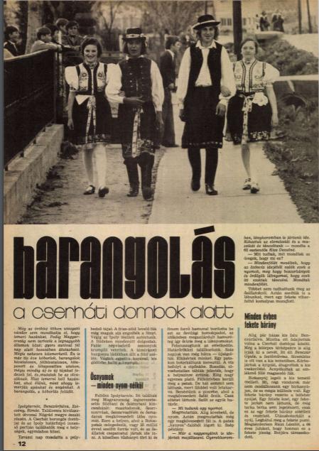 magyarifjusag1976cikk.png