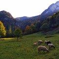 Őszi hétvége a Kis-Fátrában