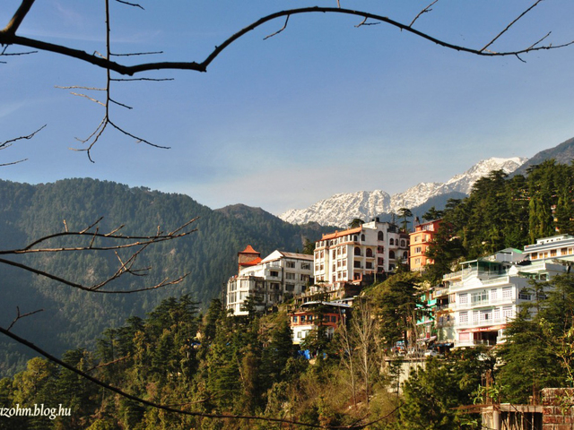 Lovesztori a Himalájában – McLeod Ganj