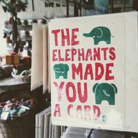 Elefántkakiból papír?