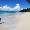 Az Indiai Óceán gyöngyszeme – utazás az Andamán-szigetekre