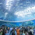 A 10 legjobb hely Guangdongban
