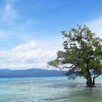 Közép-Maluku elfeledett gyöngyszemei – Saparua és Molana