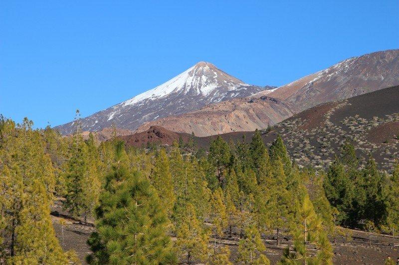tenerife-teide-volcano-canary-islands-nature-1.jpg