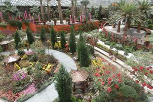 Gardens by the bay- az örök tavasz és az esőerdők világa Szingapúrban