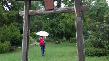 Nyári zápor a japánkertben