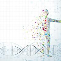 Tudja, hogy hány sejtből áll az emberi test?