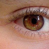 8 meglepő tény a szemről