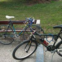 Vizsga, bicikli, bolondok Szentendrén