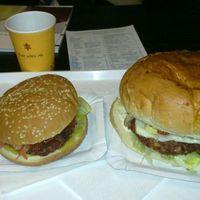 VinCE 2011 + Buffalo's hamburger