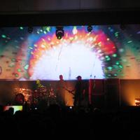 Placebo lemezbemutató Bécsben (Wiener Stadthalle, 2013. november 21.)
