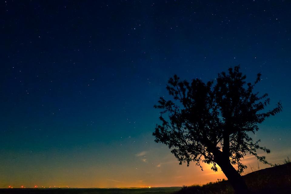 moonlight-1603270_960_720.jpg