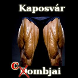kaposvar_combjai.jpg