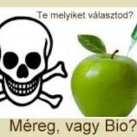 Mezőgazdasági vegyszerek kockázatelemzése az egészségre és a méhekre