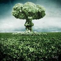 A halál neve – GMO